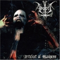 Abgott - Artefact Of Madness