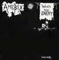 Amebix - Who's the Enemy