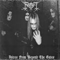 Frost - Voices from Beyond the Gates